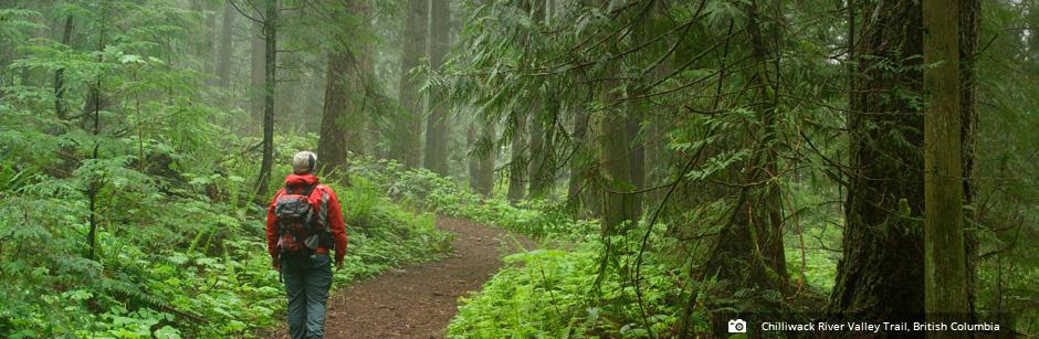 chilliwack-river-trail-british-columbia-trans-canada